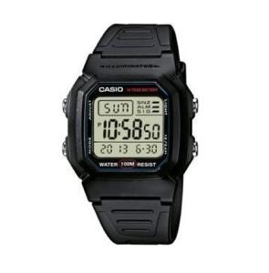 Casio Wrist Watch W800H 1AVDF