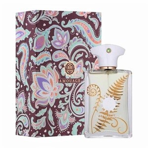 Amouage Bracken Edp Perfume Spray 100ml For Men